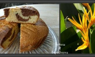 Gâteau au Yaourt Marbré Chocolat