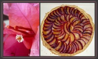 Tarte aux Prunes, Miel & Epices