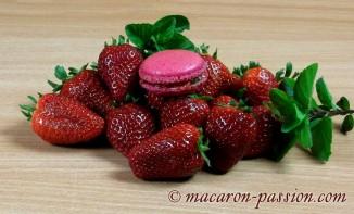 Macarons fraise menthe