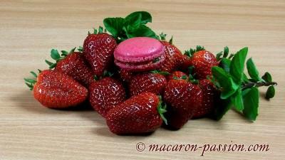 Macarons fraise et menthe