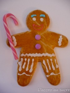 Mangez des TiBiscuits pour Noël!