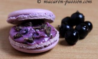 Macarons Cassis Chocolat