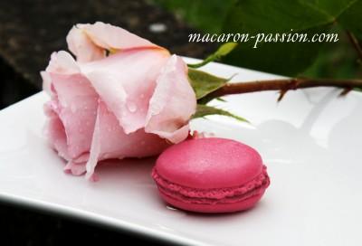 Macarons à la gelée de roses