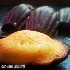 Madeleines Citron en Coque Chocolat Noir sans Lactose