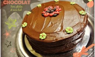 Gâteau au chocolat sans gluten et sans lait