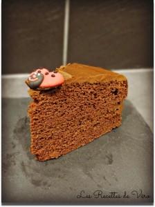 gâteaux au chocolat sans gluten et sans lait