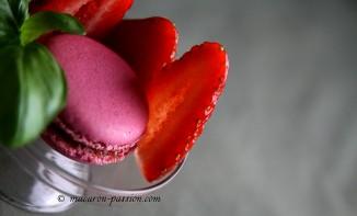 Macarons fraises basilic