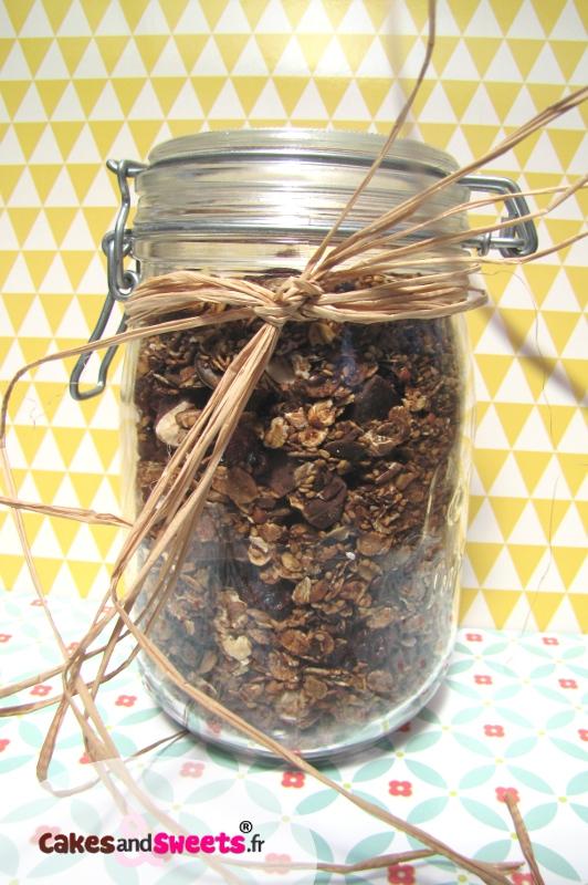 Granola Cranberry Chocolat Noisette